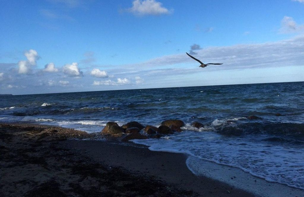 Reportage: Wandel-Ratour zur Ostsee